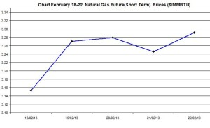 Natural Gas price  chart -  February 18-22  2013