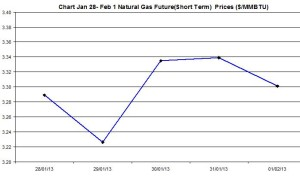Natural Gas price  chart -  January 28 - February 1  2013