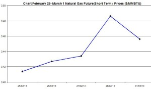 Natural Gas price  chart -  February  25 - March 1  2013