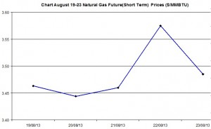 Natural Gas price  chart -  August 19-23  2013