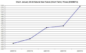 Natural Gas price  chart -January 20-24 2014