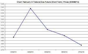 Natural Gas price  chart - February 3-7 2014