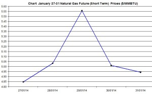 Natural Gas price  chart -January 27-31 2014